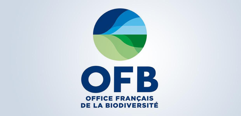 Logo Office Français de la Biodiversité - D'ailleurs - Studio de design graphique éthique