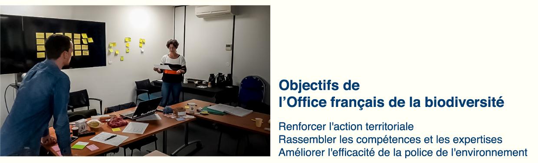 Illustration Office Français de la Biodiversité - D'ailleurs - Studio de design graphique éthique